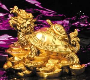 Bilde av Dragon Turtle Messing Feng